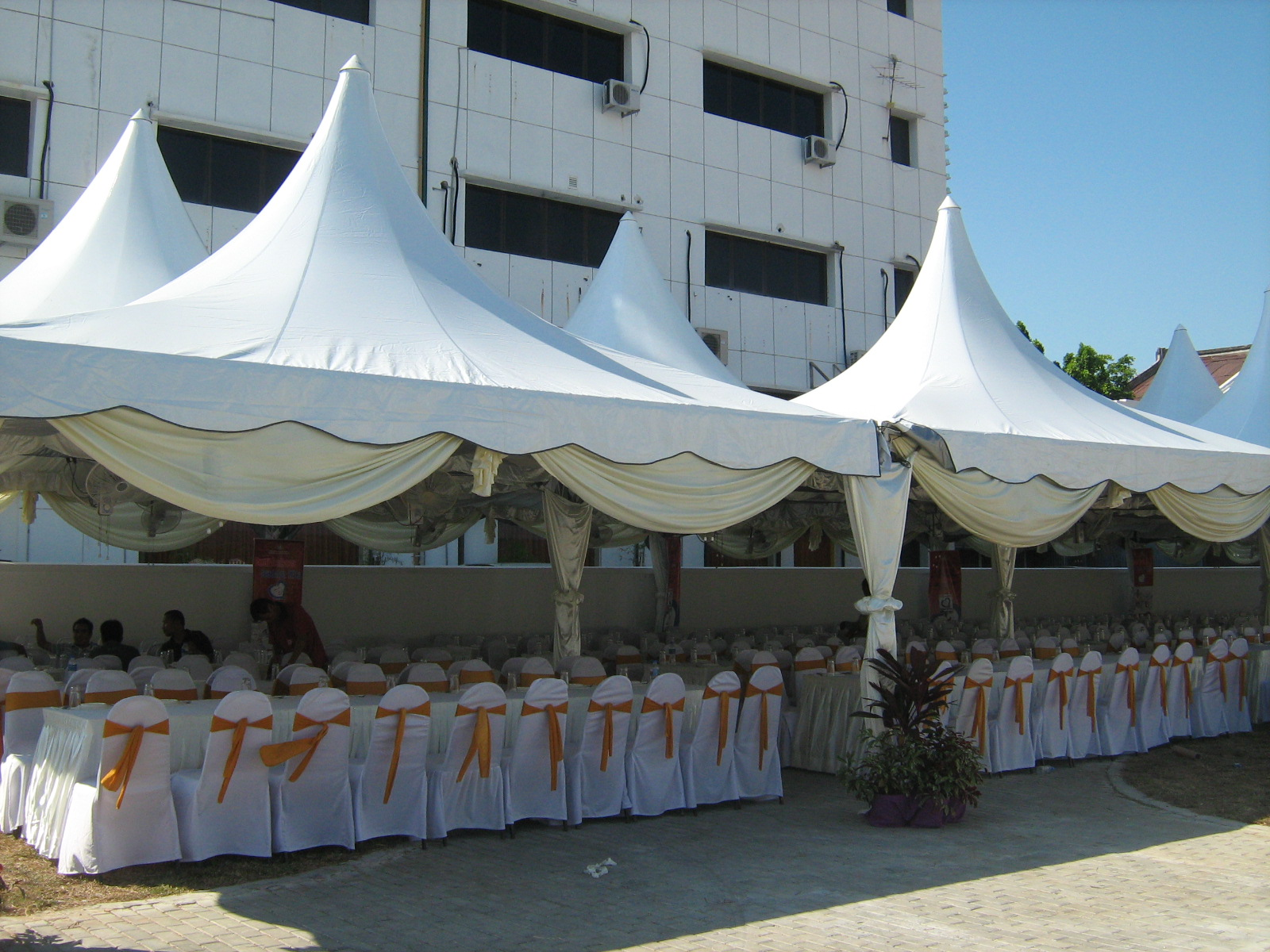 Scallop Canopy Rental Malaysia Beautiful And Friendly Design